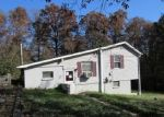 Foreclosed Home en FOREST TRL, Delta, PA - 17314