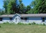 Foreclosed Home in ELIZABETH ST, Albion, MI - 49224