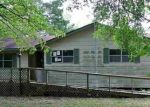 Foreclosed Home in VZ COUNTY ROAD 4912, Van, TX - 75790