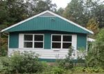 Foreclosed Home in CENTER ST, Palenville, NY - 12463