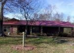 Foreclosed Home in COUNTY ROAD 448, Section, AL - 35771