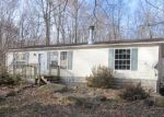 Foreclosed Home en VICTORY RD, Polk, PA - 16342