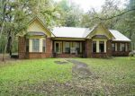 Foreclosed Home en HIGHWAY 69, Grand Ridge, FL - 32442