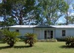 Foreclosed Home en E CAMELOT PL, Hernando, FL - 34442