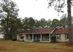 Foreclosed Home en W WILLOW CREEK LN, Mc Rae, GA - 31055