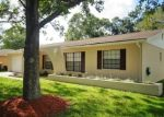 Foreclosed Home en BRIARBERRY LN, Tampa, FL - 33624