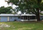 Foreclosed Home en LONG ST, Lakeland, FL - 33801