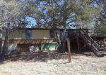Foreclosed Home in MAY QUEEN DR, Cripple Creek, CO - 80813