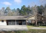 Foreclosed Home in NW JAP AUSTIN RD, Blountstown, FL - 32424