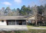 Foreclosed Home en NW JAP AUSTIN RD, Blountstown, FL - 32424