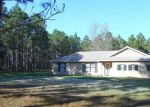 Foreclosed Home en DARCY RD, Lady Lake, FL - 32159