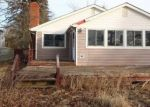 Foreclosed Home en S LAKE DR, Columbiaville, MI - 48421