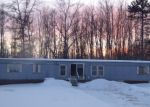 Foreclosed Home en W ARROWHEAD DR, Pine River, MN - 56474