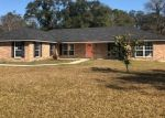 Foreclosed Home en CONCILIATION LN, Green Cove Springs, FL - 32043