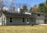 Foreclosed Home en BISMARK BLVD, Roscommon, MI - 48653