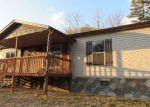 Foreclosed Home en MCDOWELL BRANCH LN, Fort Blackmore, VA - 24250