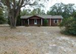 Foreclosed Home in WARD BASIN RD, Milton, FL - 32583