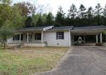 Foreclosed Home in BLUE RIDGE RD, Chapmanville, WV - 25508
