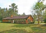 Foreclosed Home in COUNTY ROAD 220, Middleburg, FL - 32068
