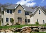 Foreclosed Home en LOWER MOUNTAIN DR, Effort, PA - 18330