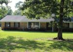 Foreclosed Home in PINE TIMBERS DR, Sour Lake, TX - 77659
