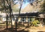 Foreclosed Home in PLANTERS DR, Ellabell, GA - 31308