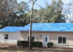 Foreclosed Home en SW 252ND TER, Newberry, FL - 32669