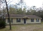 Foreclosed Home en NE 3RD PL, Williston, FL - 32696