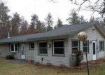Foreclosed Home en TWO BUCK TRL, West Branch, MI - 48661