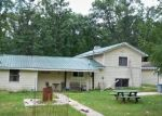 Foreclosed Home en N IRONS RD, Irons, MI - 49644