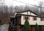 Foreclosed Home in EADS ST, Pittsburgh, PA - 15210