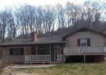 Foreclosed Home en PINE GROVE RD, Stanley, VA - 22851