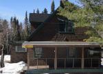 Foreclosed Home en WHIRL I GIG RD, Lanse, MI - 49946