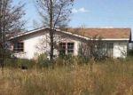 Foreclosed Home en E RUCKER CANYON RD, Elfrida, AZ - 85610