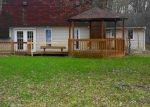 Foreclosed Home en WENN RD, Birch Run, MI - 48415