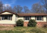 Foreclosed Home en S 9 MILE RD, Lake City, MI - 49651