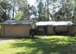 Foreclosed Home en LANRELL DR, Tallahassee, FL - 32303