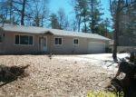Foreclosed Home en S FARMING RD, Woodruff, WI - 54568