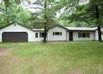 Foreclosed Home en M 82, Howard City, MI - 49329