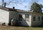 Foreclosed Home en SILVER CREEK DR, Green Cove Springs, FL - 32043