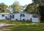 Foreclosed Home en SOUTHWOOD PL, Saint Augustine, FL - 32084