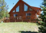 Foreclosed Home in MARIPOSA CIR, Cripple Creek, CO - 80813