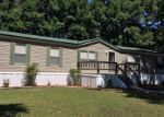 Foreclosed Home en NW 27TH WAY, Bell, FL - 32619