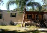 Foreclosed Home en NW LYONS ST, Arcadia, FL - 34266