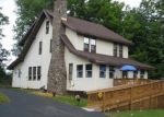 Foreclosed Home in PINE TREE RD, Newcomb, NY - 12852