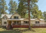 Foreclosed Home in SHENANDOAH TER, Durango, CO - 81303
