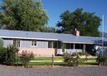 Foreclosed Home in STELL RD, Eckert, CO - 81418