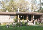 Foreclosed Home en NE 156TH ST, Starke, FL - 32091
