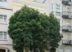 Foreclosed Home in POWELL ST, San Francisco, CA - 94108