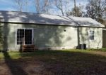 Foreclosed Home in TROUPE RD, San Mateo, FL - 32187